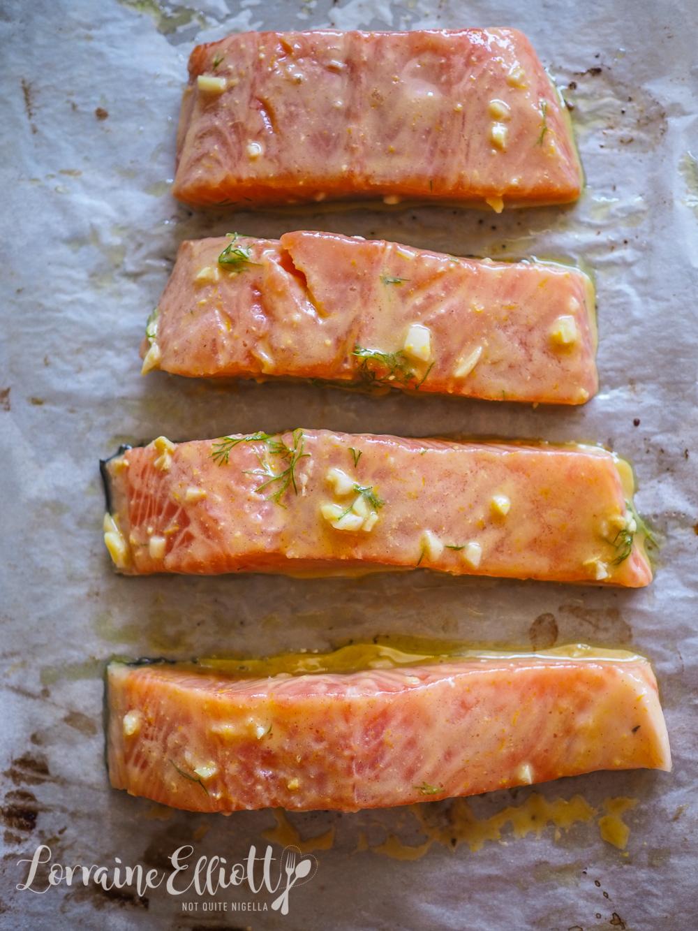 Salmon honey mustard dill