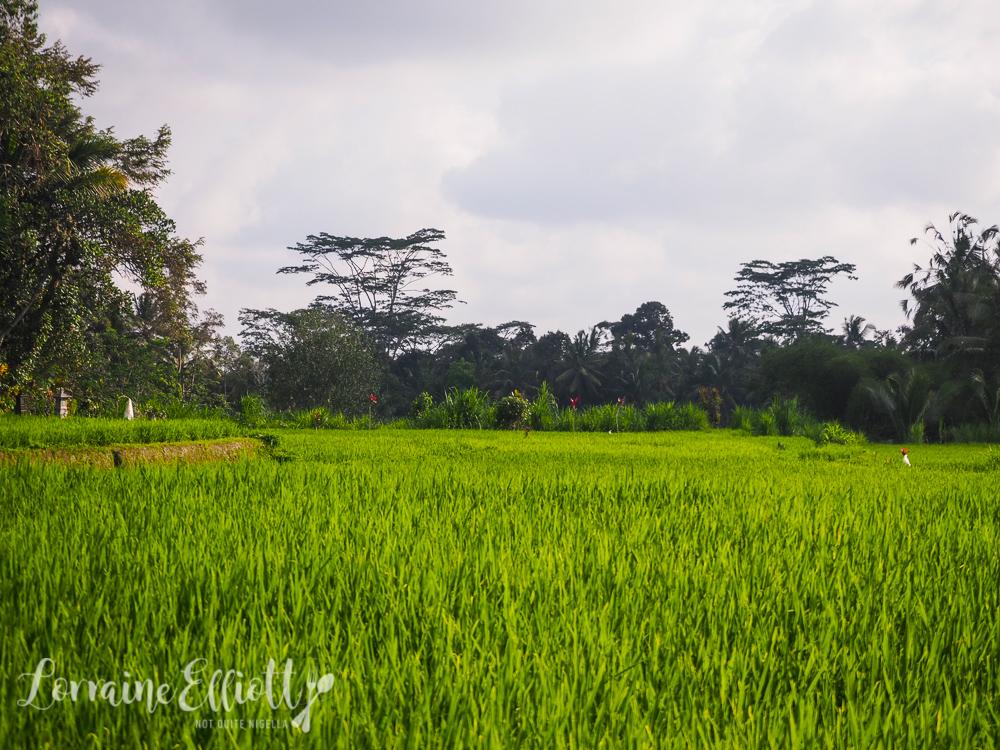 Samsara, Ubud, Bali