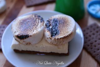 s'mores ice cream sandwich