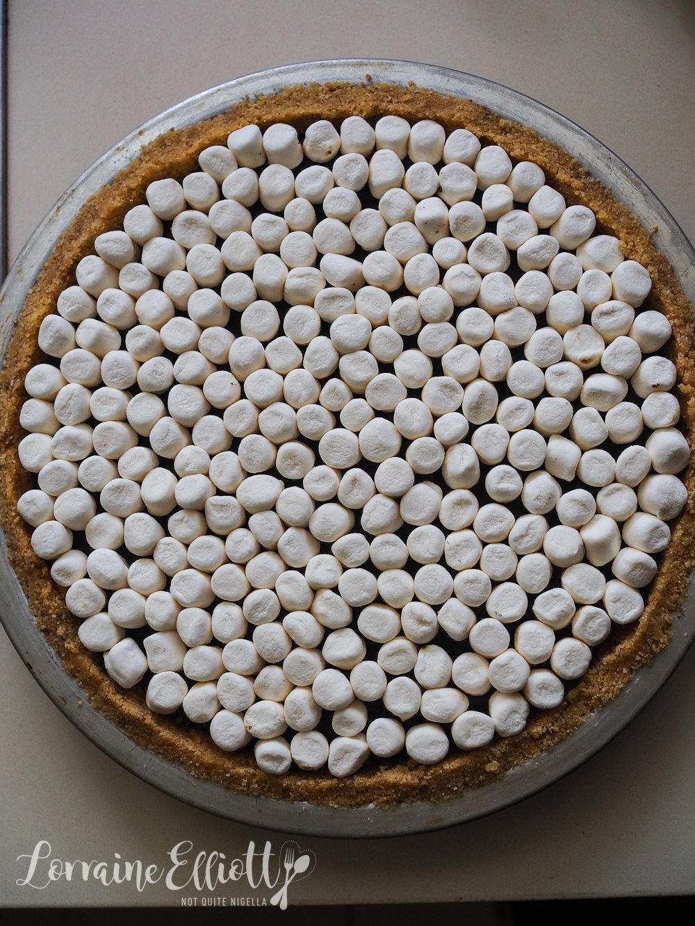 Easiest No Bake Peanut Butter S'Mores Pie