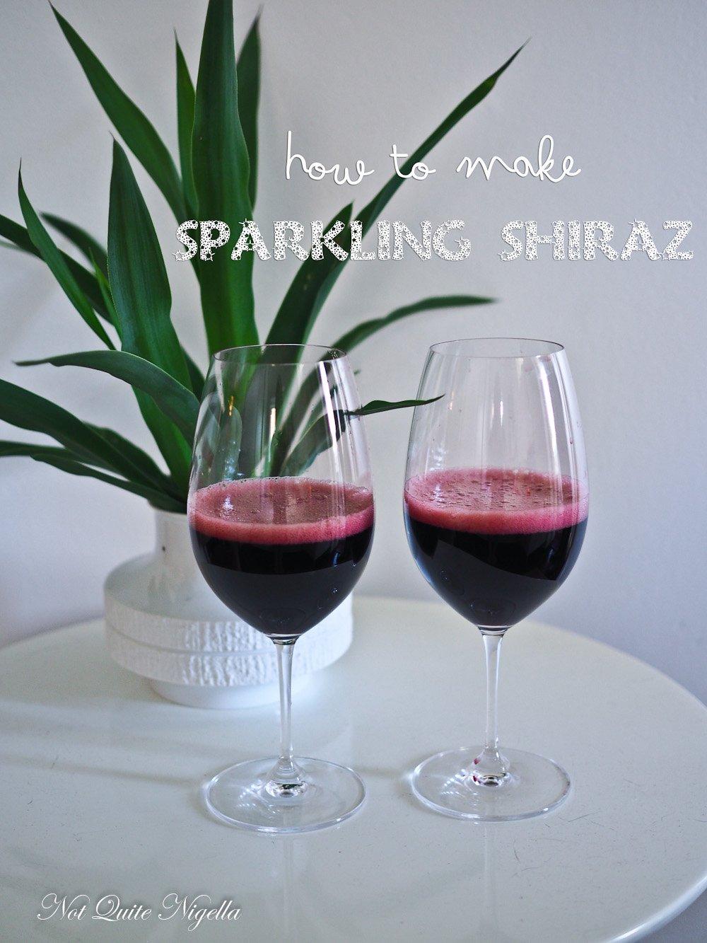 Sparkling Shiraz How To Make