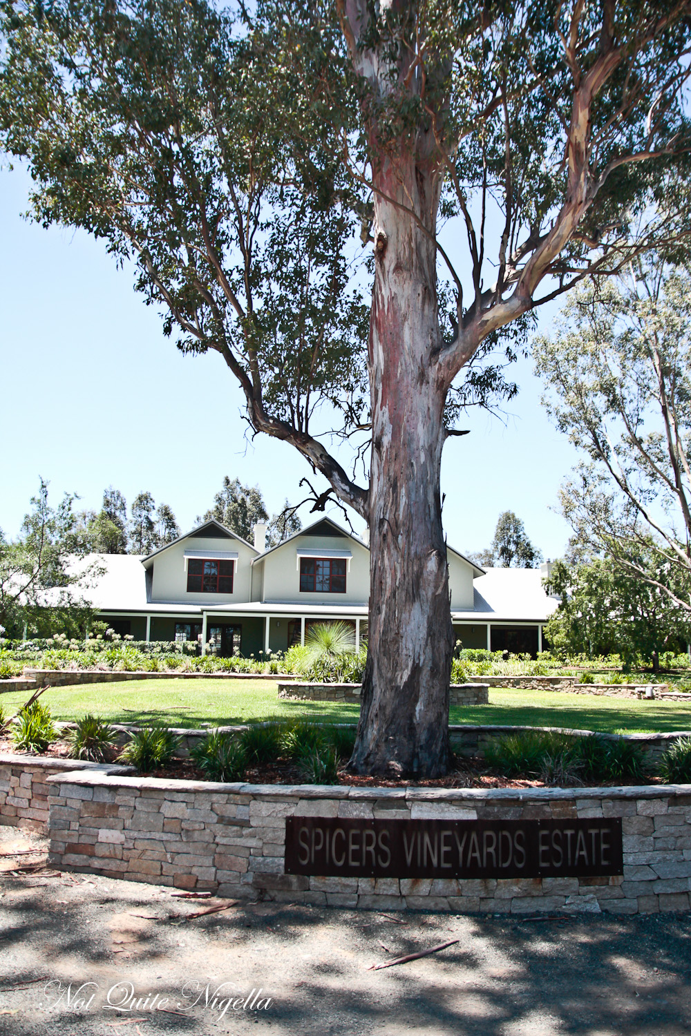 Spicers Vineyards Estate