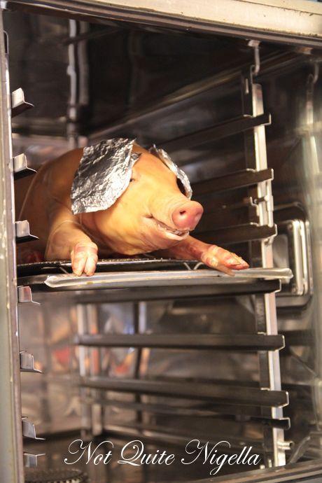 suckling pig bungalow 8