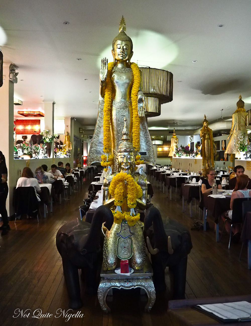 Thai Pothong Newtown