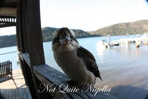 The Fat Goose, Dangar Island & The Converted Boatshed