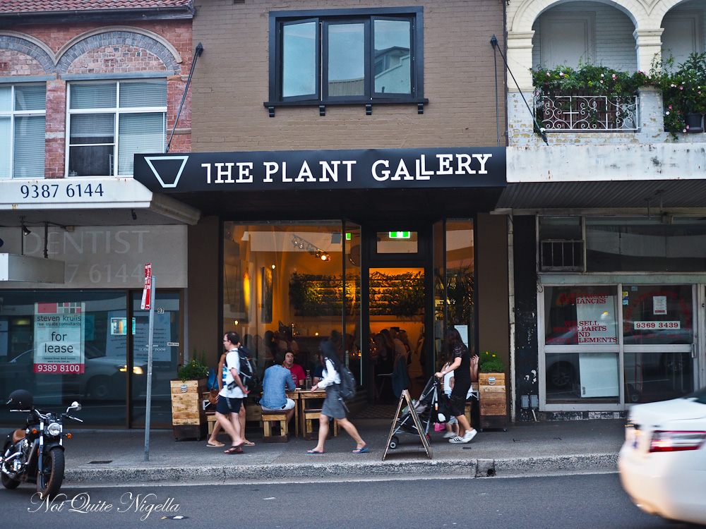The Plant Gallery Bondi Beach