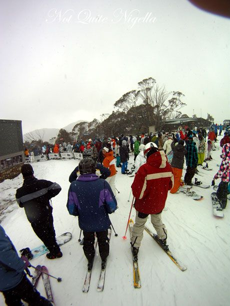 The Last Of The Snow Bunnies, Thredbo