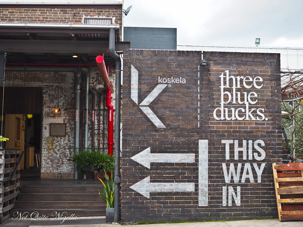 Three Blue Ducks Rosebery