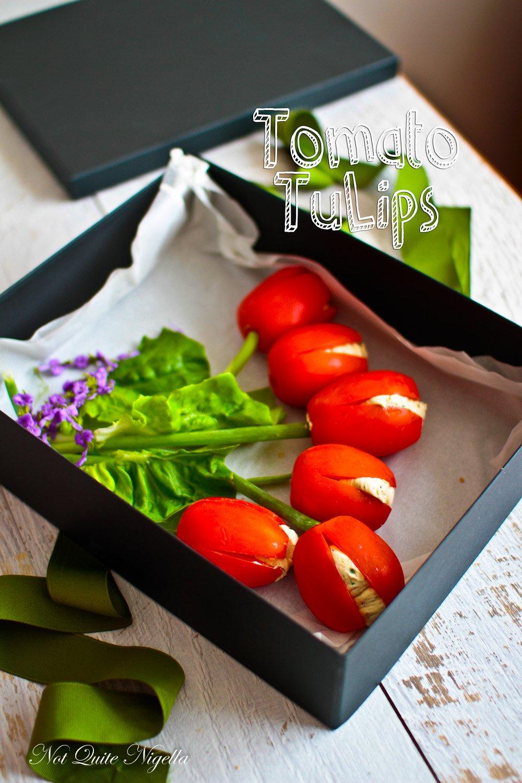 Tomato Tulip Flowers