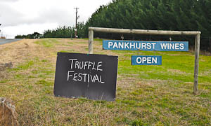 The Intoxicating Appeal of Truffles & The Truffle Festival, Canberra