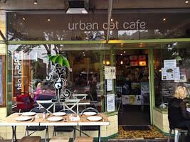 Georgian Cuisine at Urban Cat Cafe, Erskineville
