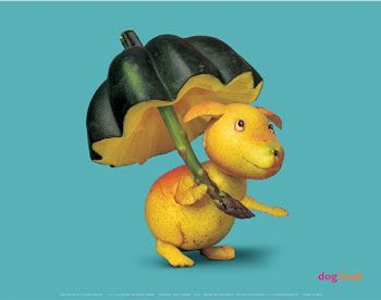 Pear dog with pumpkin umbrella