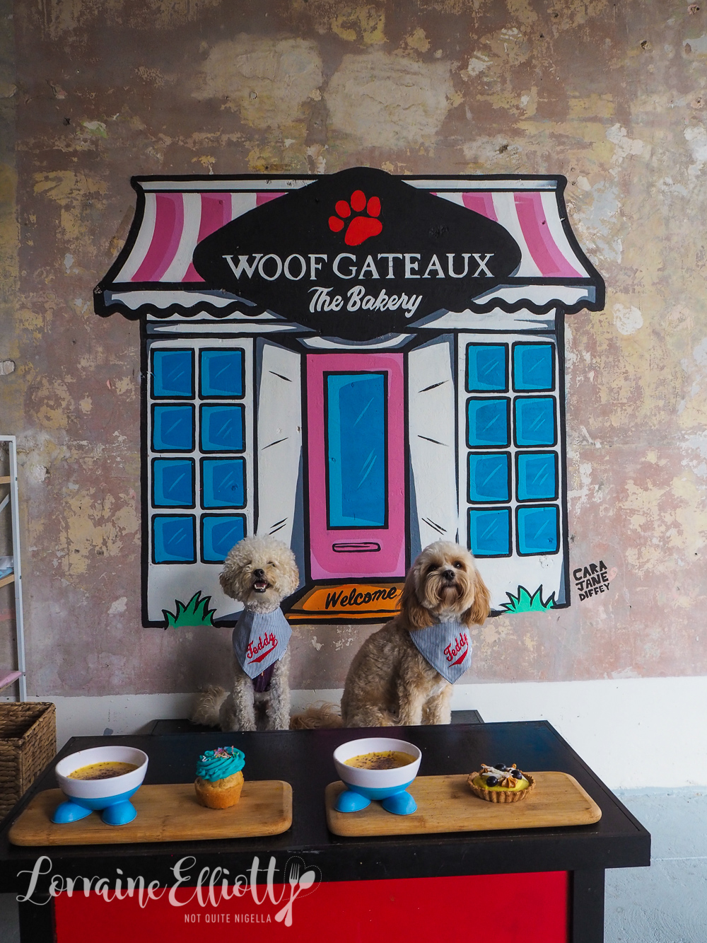 Woof Gateaux, Enmore